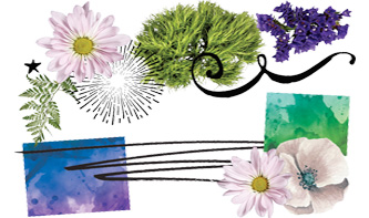 Floral-Graphics-Watercolour-Textures-Screentone-Brushes-Decorative-Elements-top
