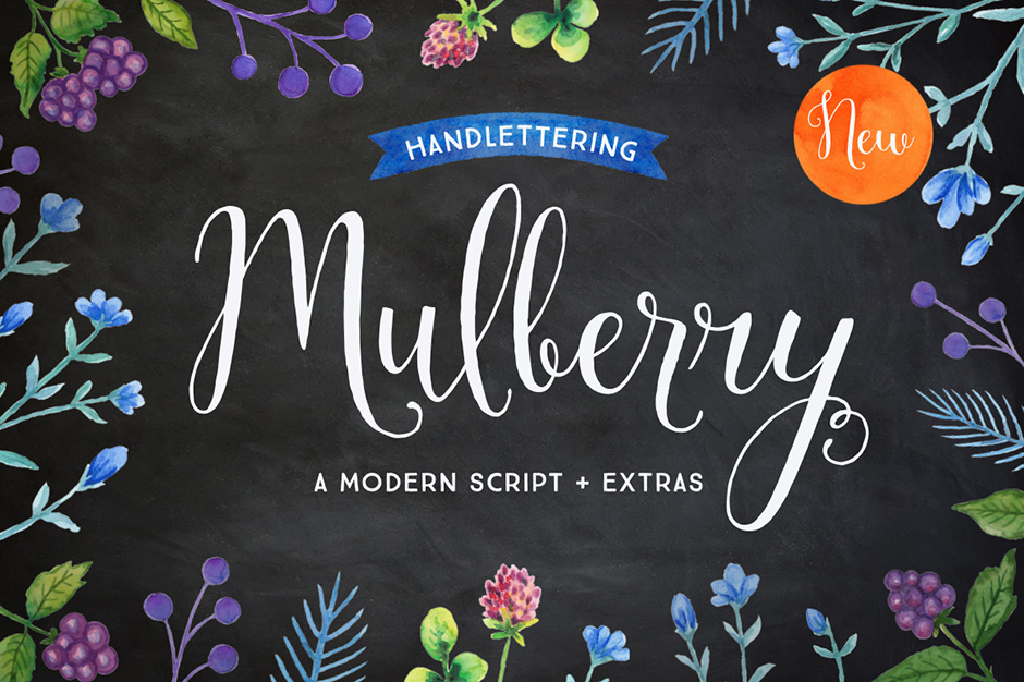 mulberry-first-image