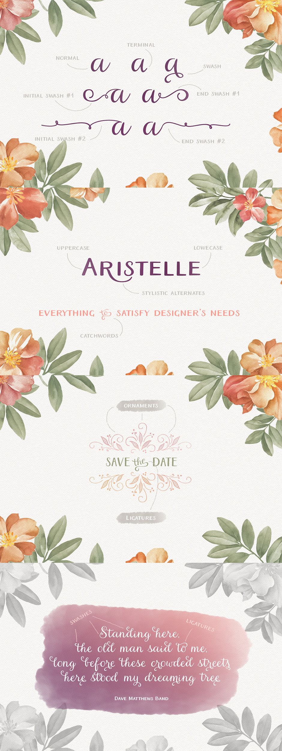 Aristelle Family
