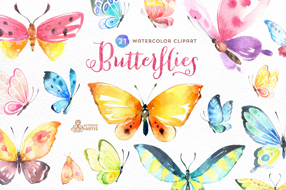 butterflies-first-image
