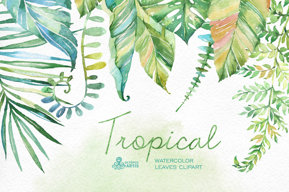 tropical-first-image