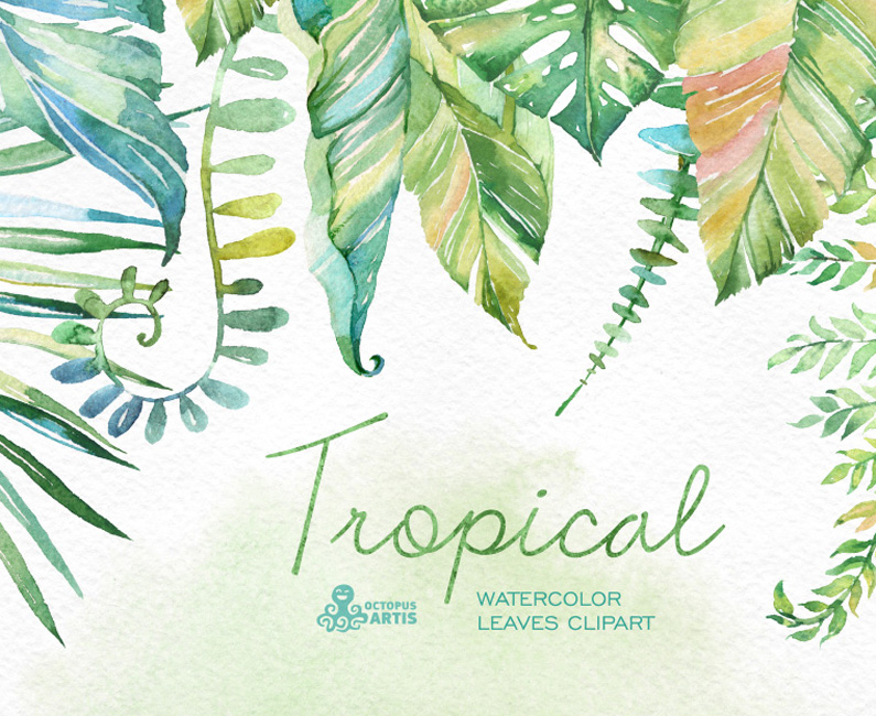tropical-top-image