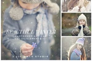 Beautiful Winter Photoshop Actions