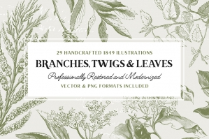 Free: 29 Branches Twigs & Leaves