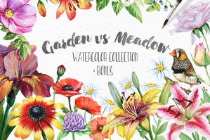 Garden vs. Meadow Watercolour Collection