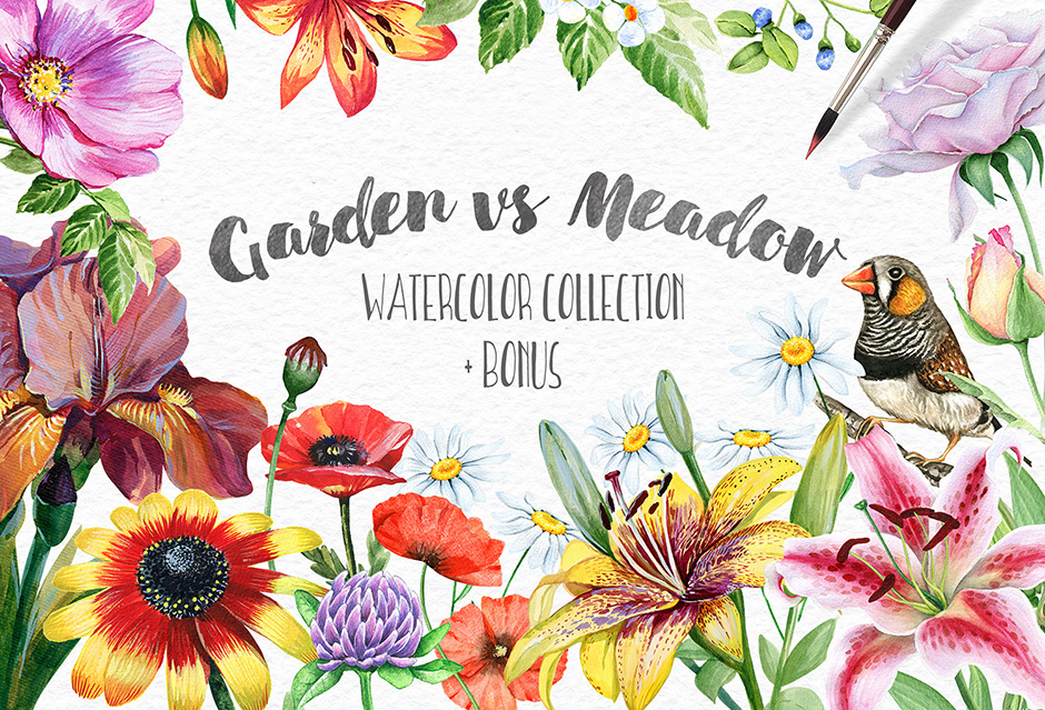 garden-vs-meadow-first-image