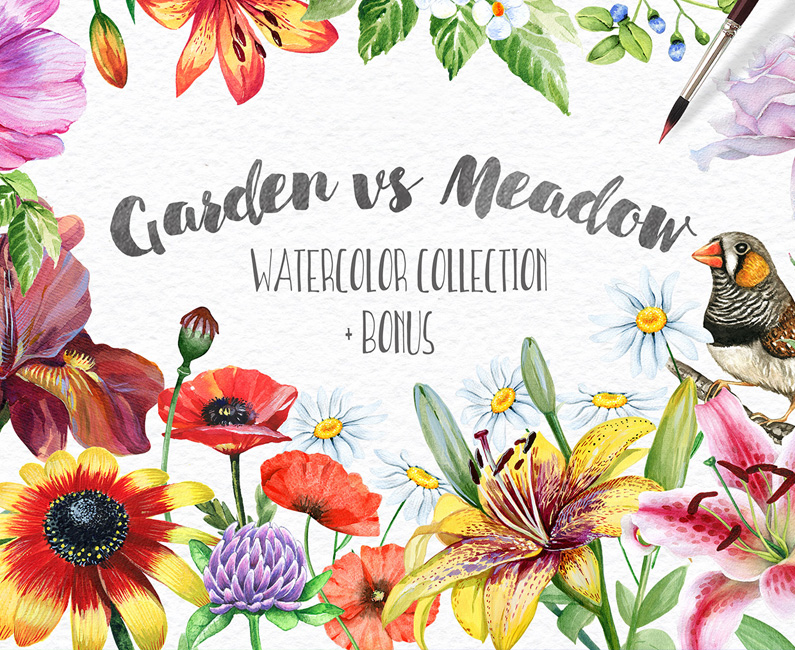 garden-vs-meadow-top-image