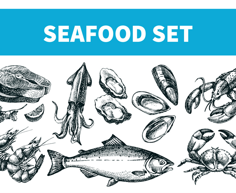 seafood-sketches-top-image