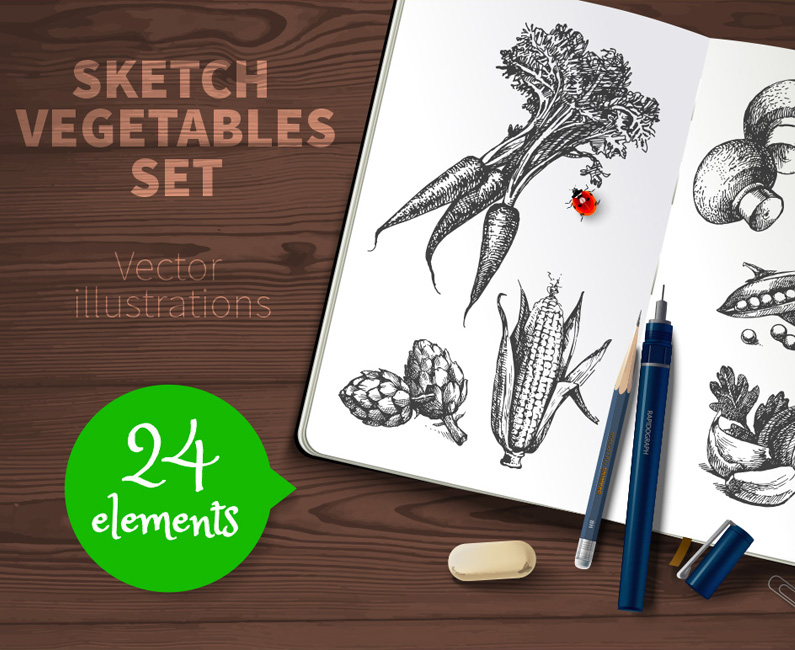 sketched-vegetables-top-image
