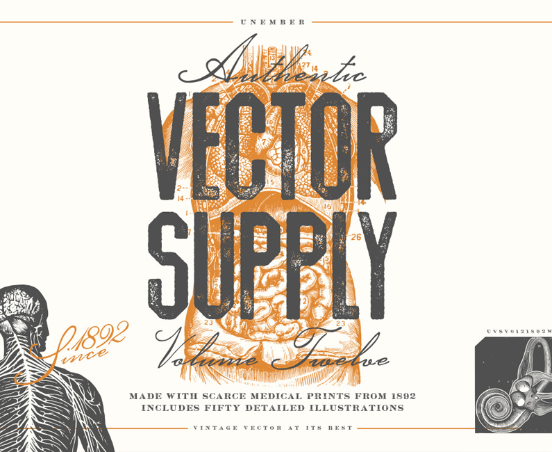 vector-supply-12-top-image