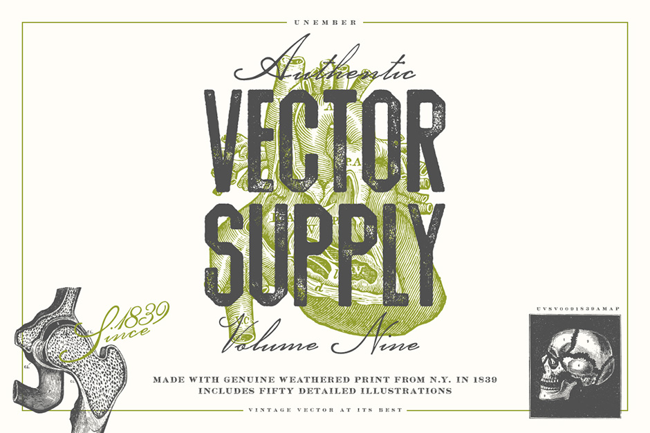 vector-supply-9-first-image