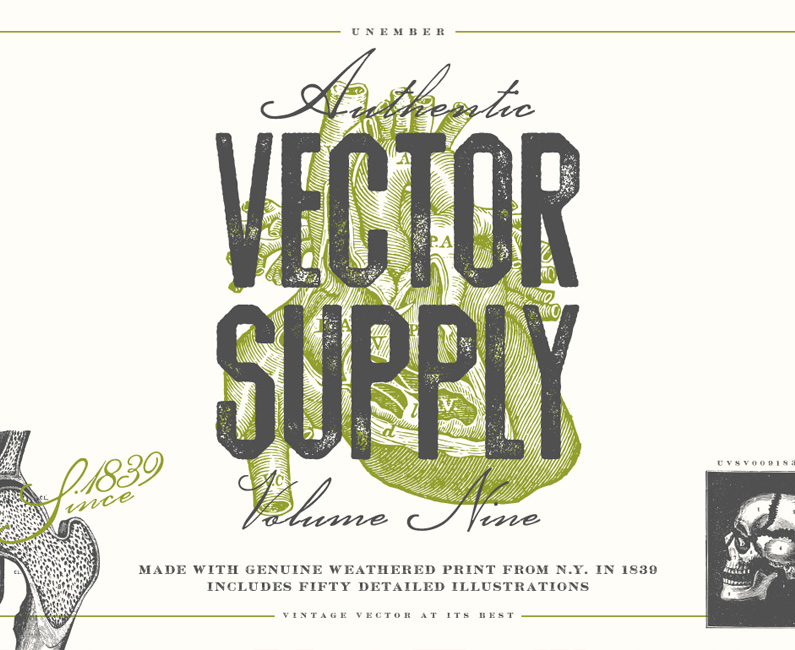 vector-supply-9-top-image