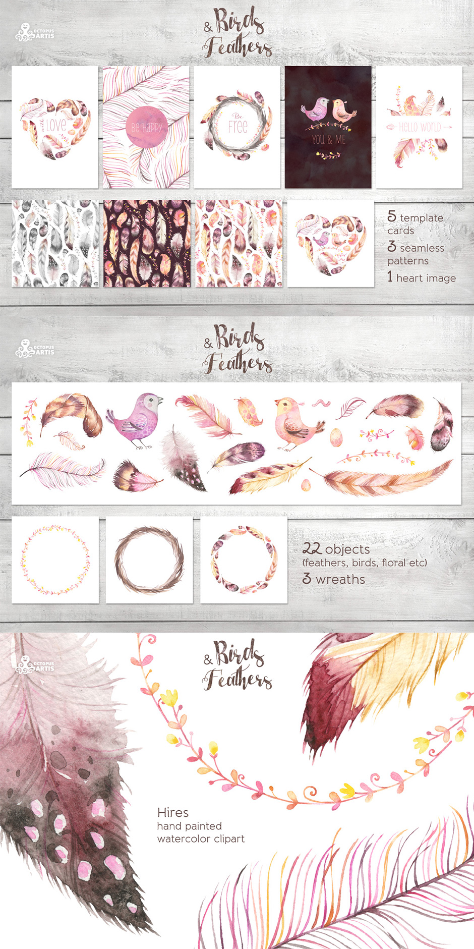 Birds & Feathers Collection