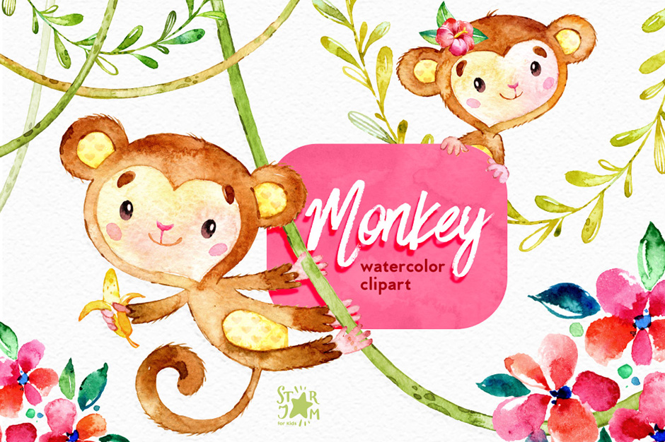 monkey-first-image