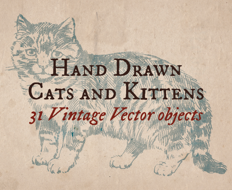 vintage-cats-top-image