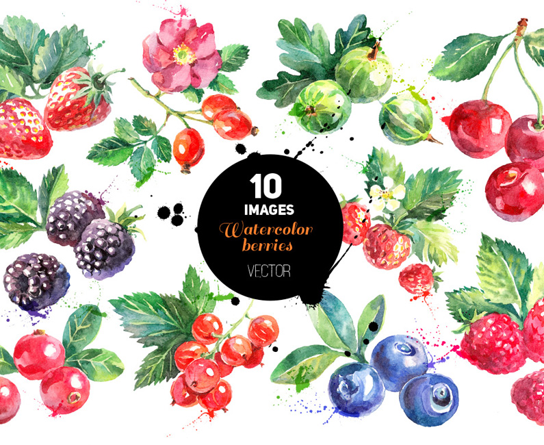 watercolor-berries-top-image