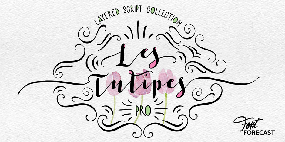 Les-Tulipes-Pro_first-image