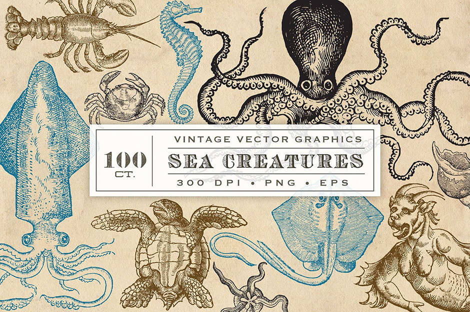 SEA-CREATURES-first-image