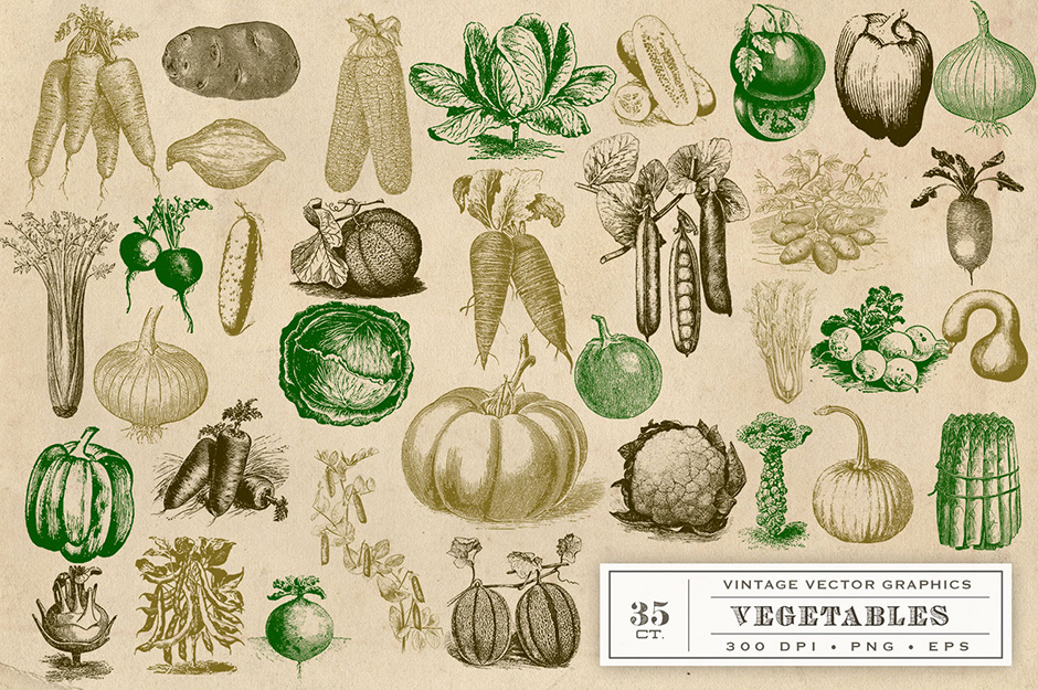 Perfect Vintage Vegetable Garden Graphics