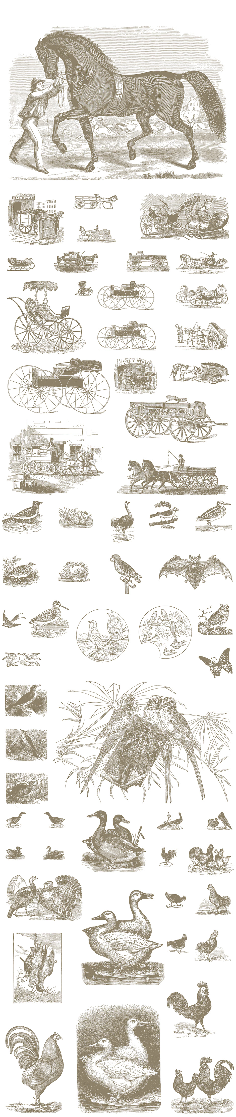 Illustrations Pack 2