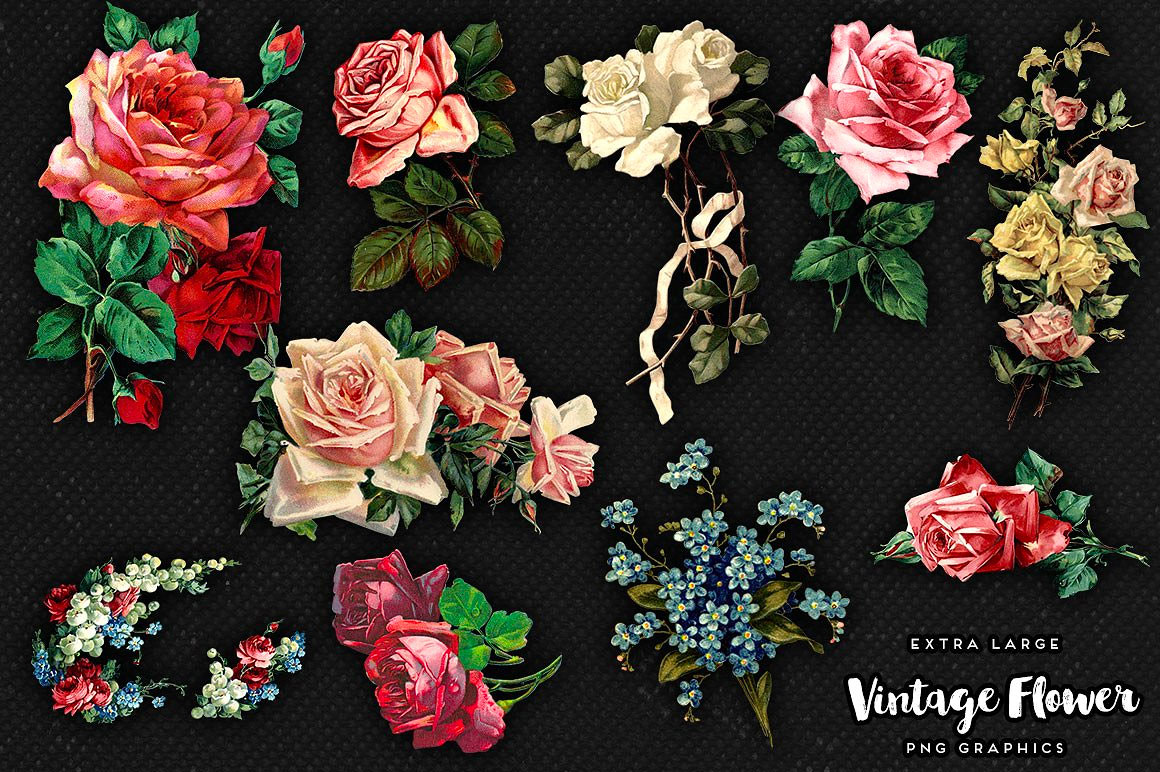 Vintage Flower Graphics No. 2