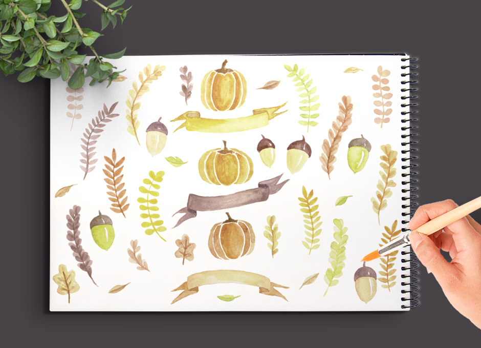 Fall Watercolor Elements & Graphics