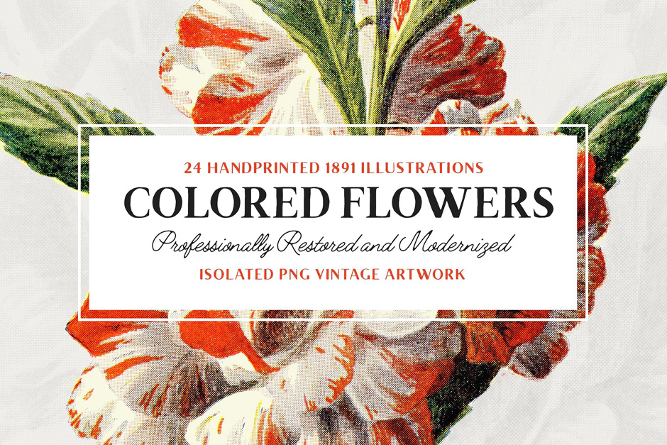 Colored-Flowers-first-image