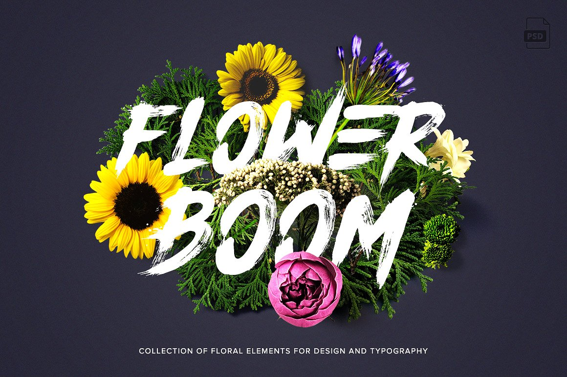flower-boom-first-image