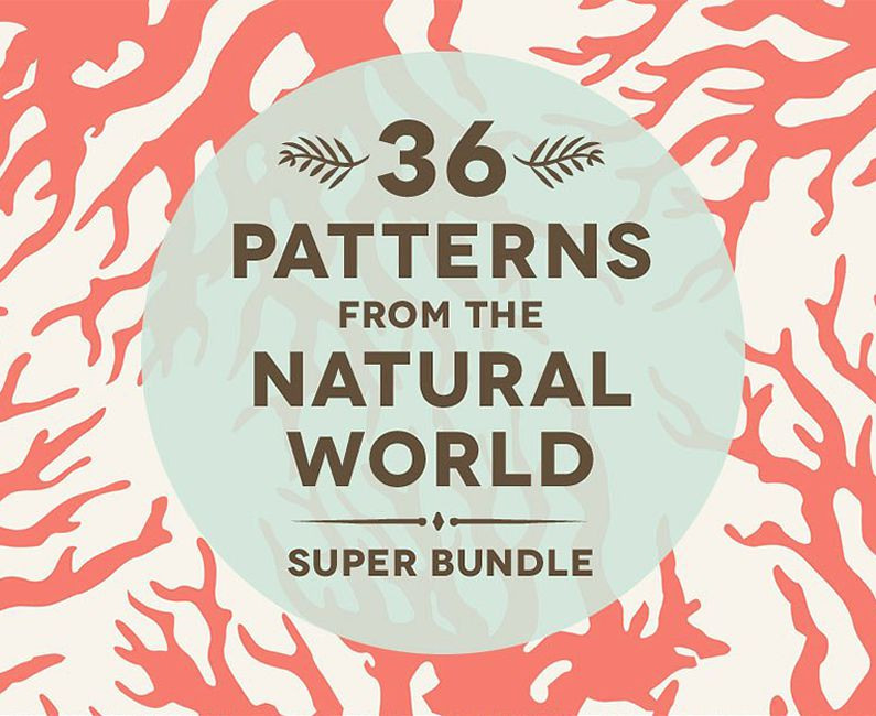 36NaturalAnimalPatterns-top-image
