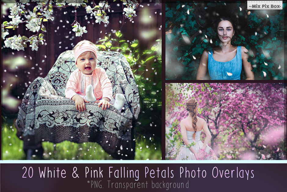 Flower Petal Photo Overlays