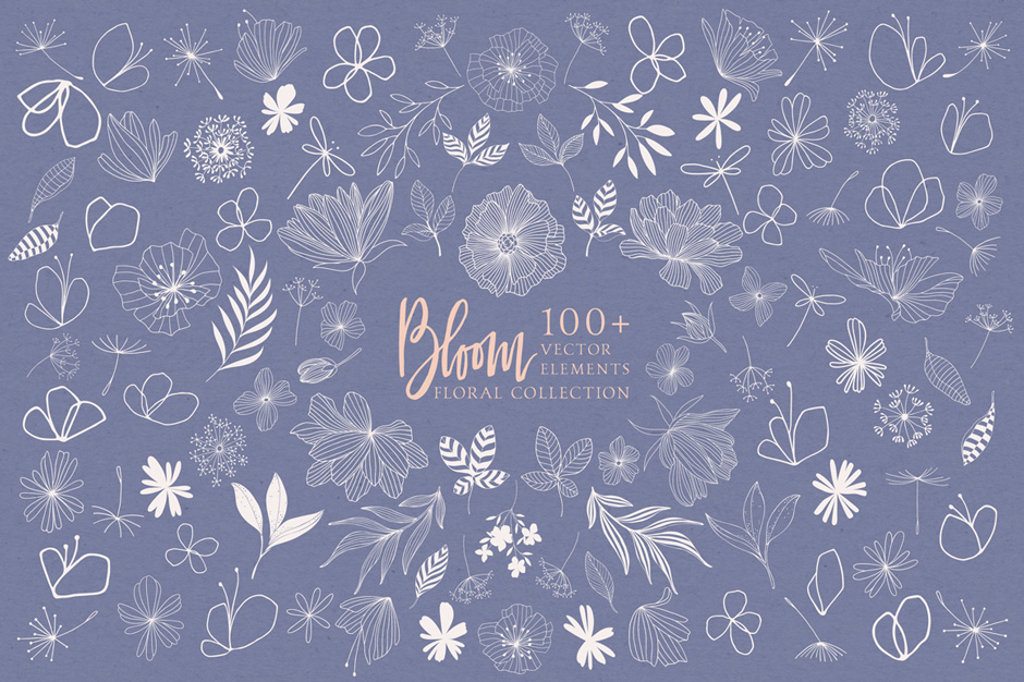 bloom-main-image4