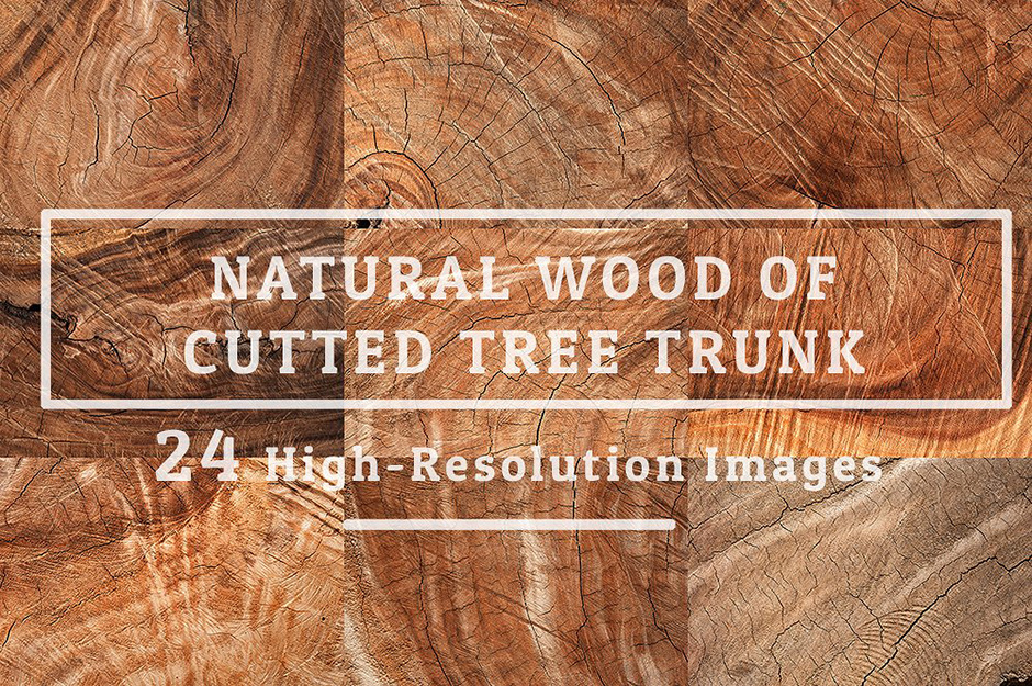 natural-wood-texture-of-cut-tree-trunk-cover-