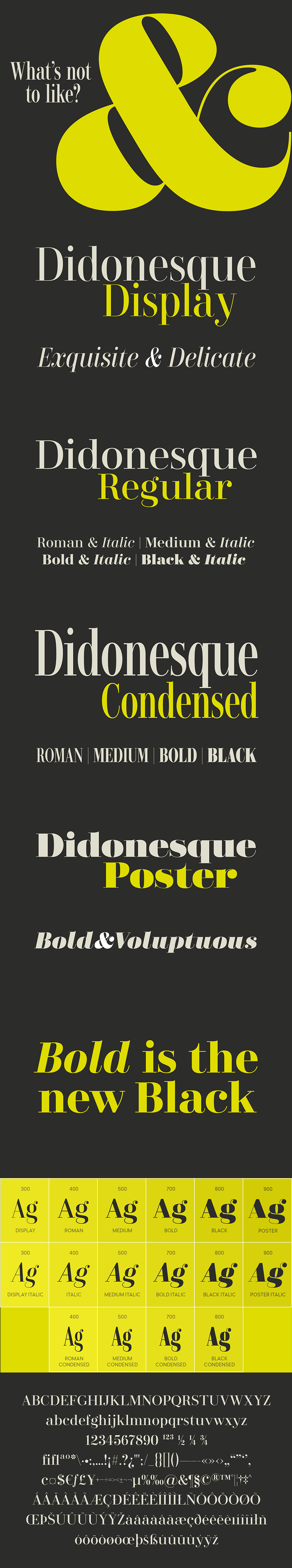 Didonesque Lite Font Family