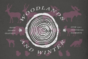 Winter Woodlands Illustrations