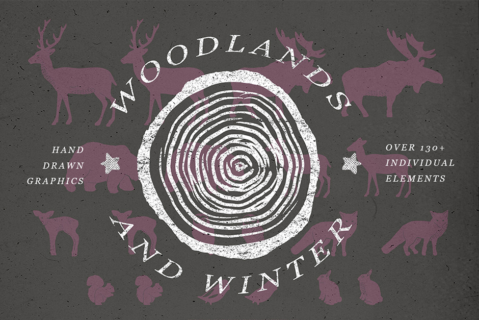Woodlands-Winter-first-image