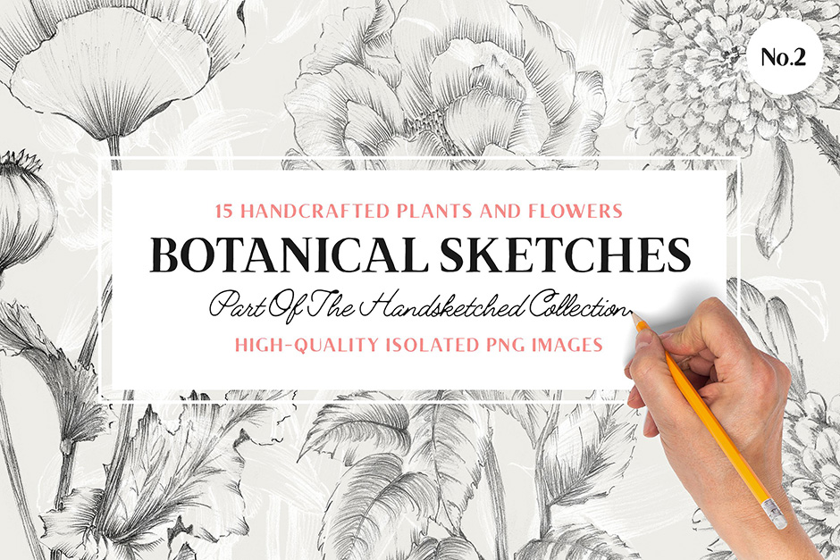 15 Handcrafted Floral Illustrations