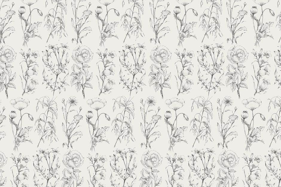 botanical-sketches-preview-4a-