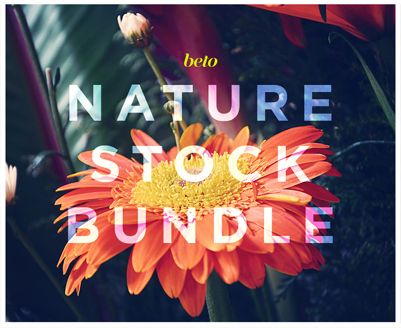 naturestockbundle-top-image