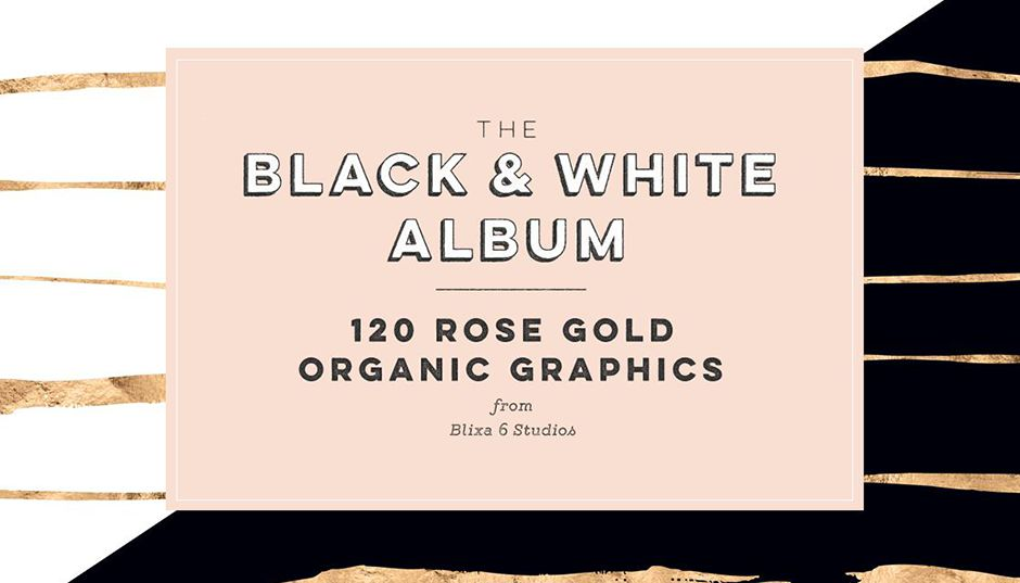 120 Black & White Rose Gold Patterns