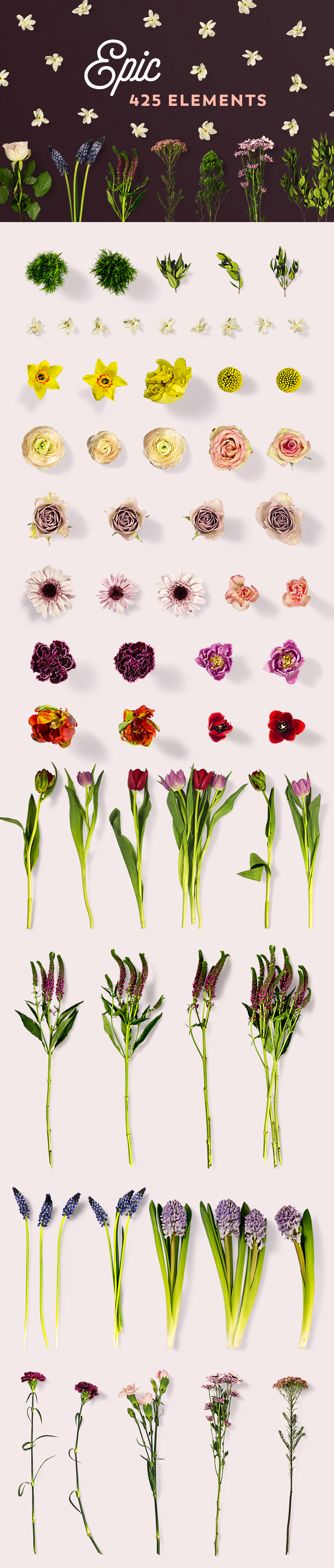 Flower Mockups Market Vol. 1
