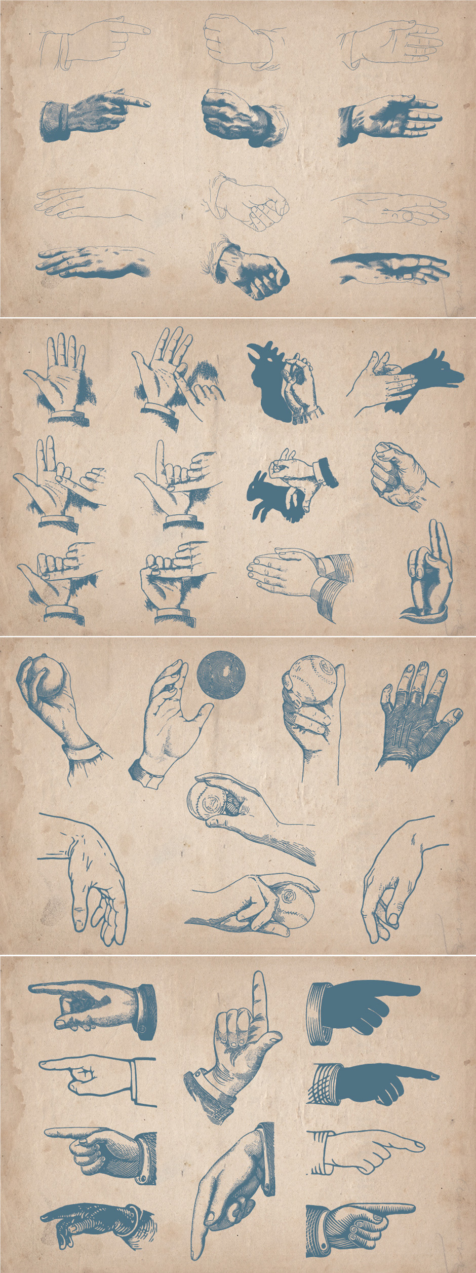 vintage hand illustrations