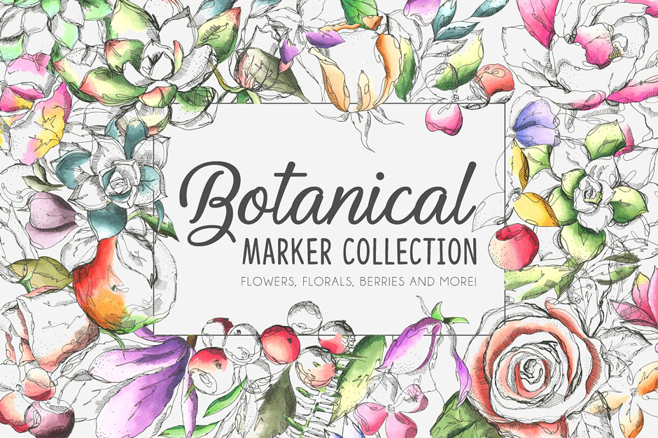 Botanic-Marker-Collection-main