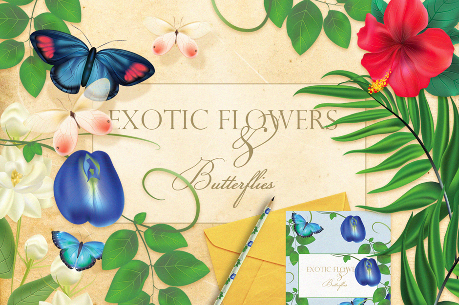 Diana Hlevnjak – Exotic flowers and butterflies cover