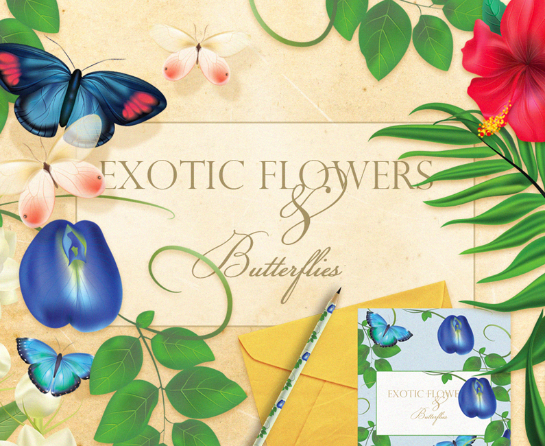 Diana Hlevnjak – Exotic flowers and butterflies feature