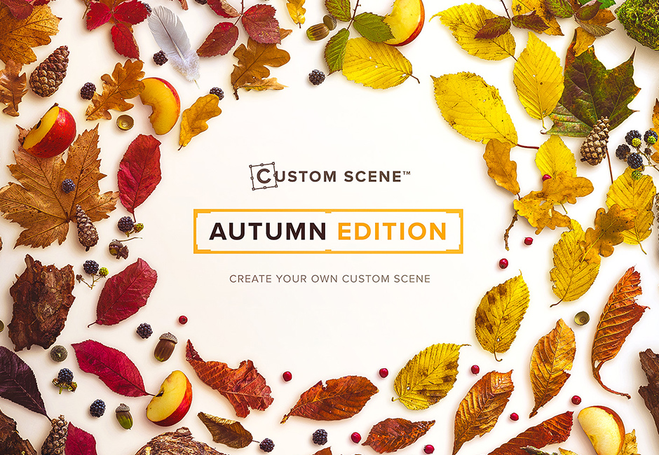 autumn-custom-scene-main