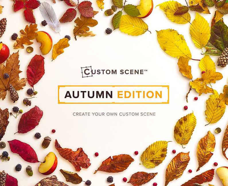 autumn-custom-scene-top