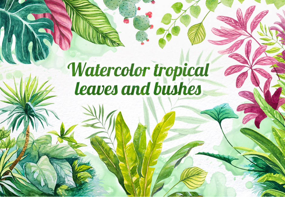 Watercolor Tropical Leaves Set Of 16 Plant Illustrations Select from premium tropical leaves of the highest quality. watercolor tropical leaves set of 16 plant illustrations