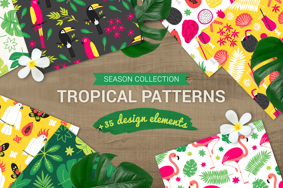 tropicalpatterns-first-image
