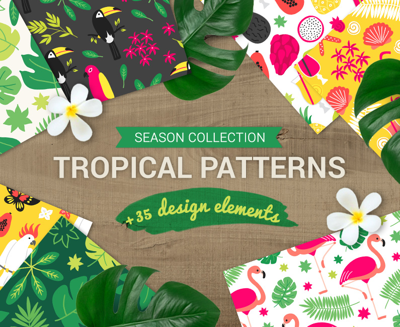 tropicalpatterns-top-image