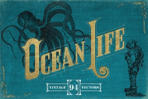 Vintage Nautical Illustrations